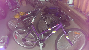 2 Bikes For Sale. 1 Male, 1 Female. Sold Together or Separately Regina Regina Area image 1