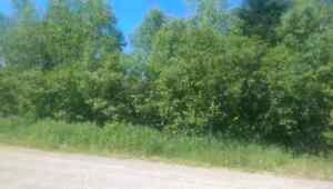 Make an offer today!!  1 acre lot, Guthrie rd.  (Hampton side)