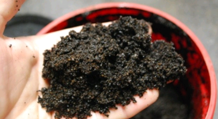 Wanted: Wanted: Coffee grounds