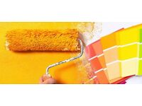 Professional Plastering,Painting and decorating,Flooring