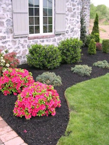 Shelburne / Orangeville Lawn and Landscaping - Mowing@20$