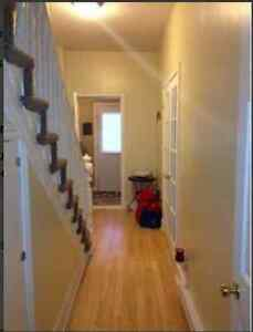 Very Large 2 Bedroom Apartment - Downtown