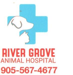 Affordable Veterinary Services