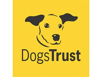 Dogs Trust Maidstone needs your help..... please