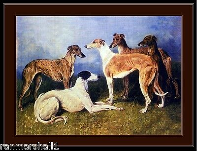 English Print Greyhound Dog Dogs Puppy Puppies Group Art Vintage Poster Picture
