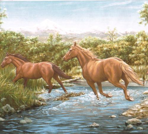 Horse Wallpaper Border Ebay