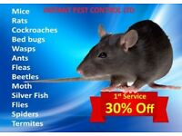 Pest Control Bedbugs Ants Rat Mice Cockroach Squirrels Moth Wasps Fleas Beetles 24/7 100% Guaranteed