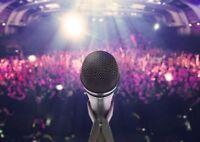 Recherche chanteurs chanteuses