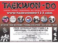 Taekwondo classes for all ages