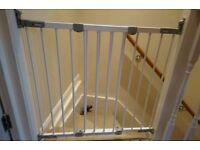 Baby Dan extendable baby gate