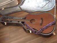 Breedlove Passport Mahogany Guitar