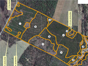 162 acres hunting lot for rent for upcoming deer season zone 10W