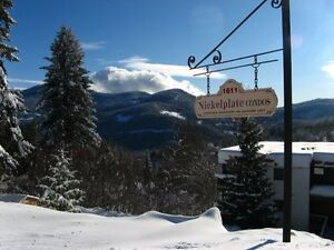 ROSSLAND - Sunny 1 bedroom apartment for sale near town.