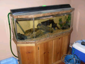 48 Gal fish tank with stand $250