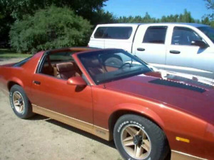 Looking for this 85 Camaro