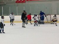 Family Hockey Games (scrimmage for adults and kids)