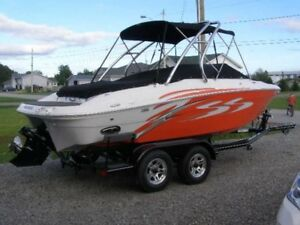 2008 Fourwinds 21 foot boat for sale