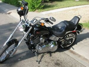 2009 Harley softail custom