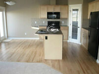Townhouse For Rent Airdrie ( Coopers Common )