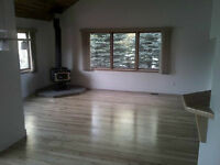 Roommate wanted...Canmore for June 1