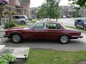 Beautiful 1987 Jaguar Vandenplas V12