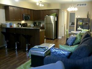 Large and New 1 Bdrm Condo - Insuite Laundry & Central AC