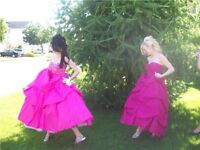 Beautiful Pink princess ball gown