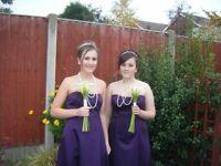 2 stunning bridesmaid dresses (Debenhams)