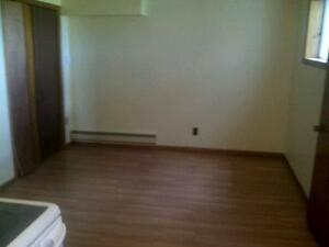 Bachelor Apartment in Irishtown all inclusive