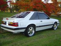 ****STOLEN*** 1986 Mustang Cobra****STOLEN****