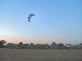 Peter Lynn Venom II Twinskin Kite