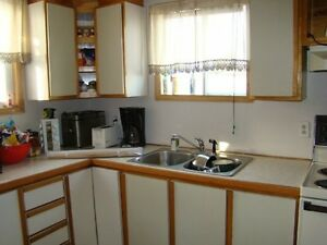 Cabinets, counter