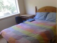 Student Accommodation in 3 Bedroom House - spacious, clean, close to university