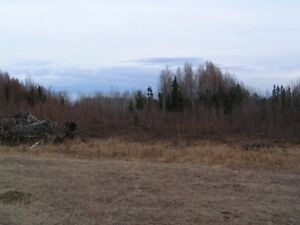 Land for sale, 100km west of Edm,between Evansburg and Wildwood