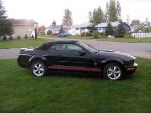 2008 Ford Mustang Warriors in Pink package Convertible