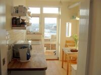 Large sunny double room excellent location. Professional Flat. All bills Included!!