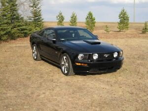 2008 Ford Mustang V8 GT Coupe (2 door)