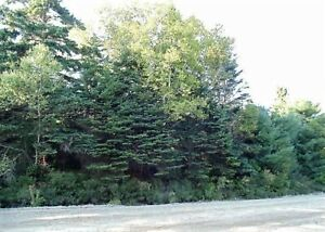 Approximate 1 Acre Building Lot in Chester Basin