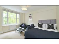 Mayfair. Spacious Studio Apartment Located on ground Floor or Red Brick Mansion
