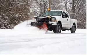 Snow removal vegetation control and fall cleanup