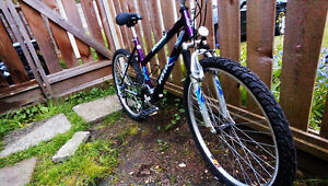 DUNLOP snowbird 21 spd bicycle
