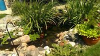 MOST TRUSTED TEAM OF AQUATIC GARDEN EXPERTS
