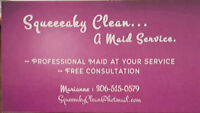 Squeeeaky Clean... A Maid Service.