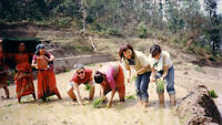 Organic farming and environmental awareness in rural Nepal
