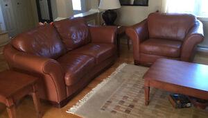 mobilier de salon en cuir