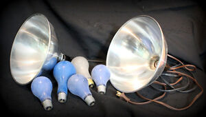 "2 camera  Flood light reflectors 10"" with cords, lumieres"