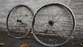 Campagnolo Zonda clincher bicycle wheels / wheelset