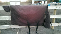 72/74 med weight Shedrow horse blanket