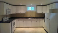 Newly Renovated 2 Bedroom Basement Apartment. Available Sept. 1