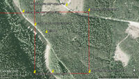 Placer Gold Claim - Willow River, Prince Geroge BC W8 $995